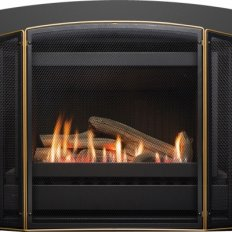 Neo Gas Fire Inbuilt Premium Classic with Simple Remote