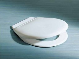 Caravelle Toilet Seat with Quick Release Hinge